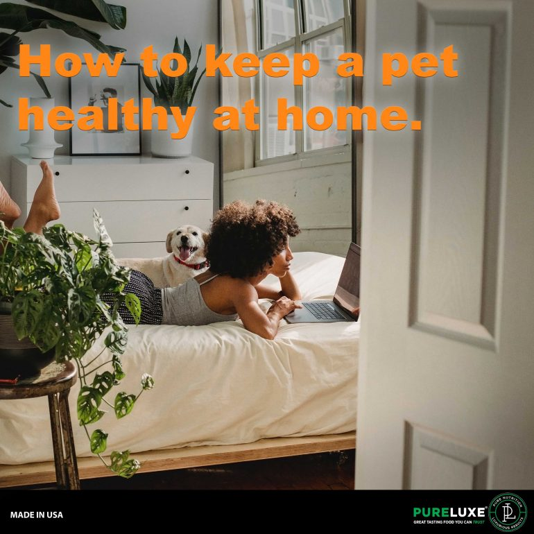 healthy-at-home-graphic